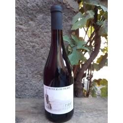 Pinot Cchio